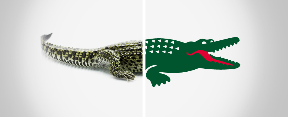 Save your logo, protecting the crocodile behind Lacoste's logo